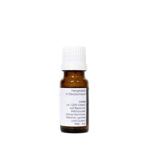 Produktfoto einer 10g Flasche Equibidol CBD Hanf Globuli Seitenansicht rechts
